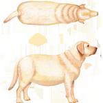 metabolic-feel-ribs-dog-5